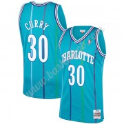 Charlotte Hornets Basketball Trøjer NBA 1992-93 Dell Curry 30# Teal Hardwood Classics Swingman..