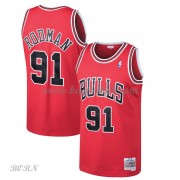 NBA Basketball Trøje Børn Chicago Bulls Kids 1997-98 Dennis Rodman 91# Red Hardwood Classics..