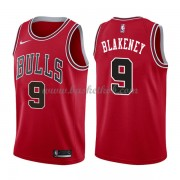 Chicago Bulls Basketball Trøjer 2018 Antonio Blakeney 9# Icon Edition..