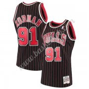 Chicago Bulls Basketball Trøjer NBA 1995-96 Dennis Rodman 91# Sort Hardwood Classics Swingman..