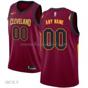 NBA Basketball Trøje Børn Cleveland Cavaliers 2018 Icon Edition