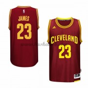 Cleveland Cavaliers Basketball Trøjer 2015-16 LeBron James 23# Road..