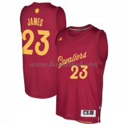 Cleveland Cavaliers 2016 LeBron James 23# Jul NBA Basketball Trøjer..