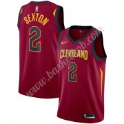 Cleveland Cavaliers Basketball Trøjer NBA 2019-20 Collin Sexton 2# Vin Icon Edition Swingman..