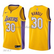 NBA Basketball Trøje Børn Los Angeles Lakers 2018 Julius Randle 30# Icon Edition..