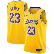 Billige Basketball Trøje Børn Los Angeles Lakers 2019-20 LeBron James 23# Guld Icon Edition Swingman..