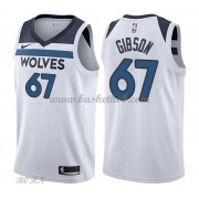 NBA Basketball Trøje Børn Minnesota Timberwolves 2018 Taj Gibson 67# Association Edition..