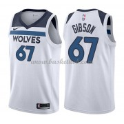 Minnesota Timberwolves Basketball Trøjer 2018 Taj Gibson 67# Association Edition..
