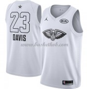 New Orleans Pelicans Anthony Davis 23# Hvid 2018 All Star Game Swingman Basketball Trøjer..